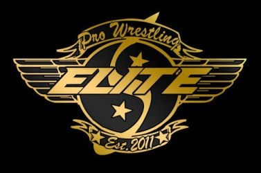 Pro Wrestling Elite 'Fallen Angel'